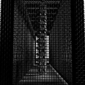 Holocaust 2008
